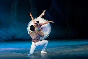 バレエ「白鳥の湖」の一場面